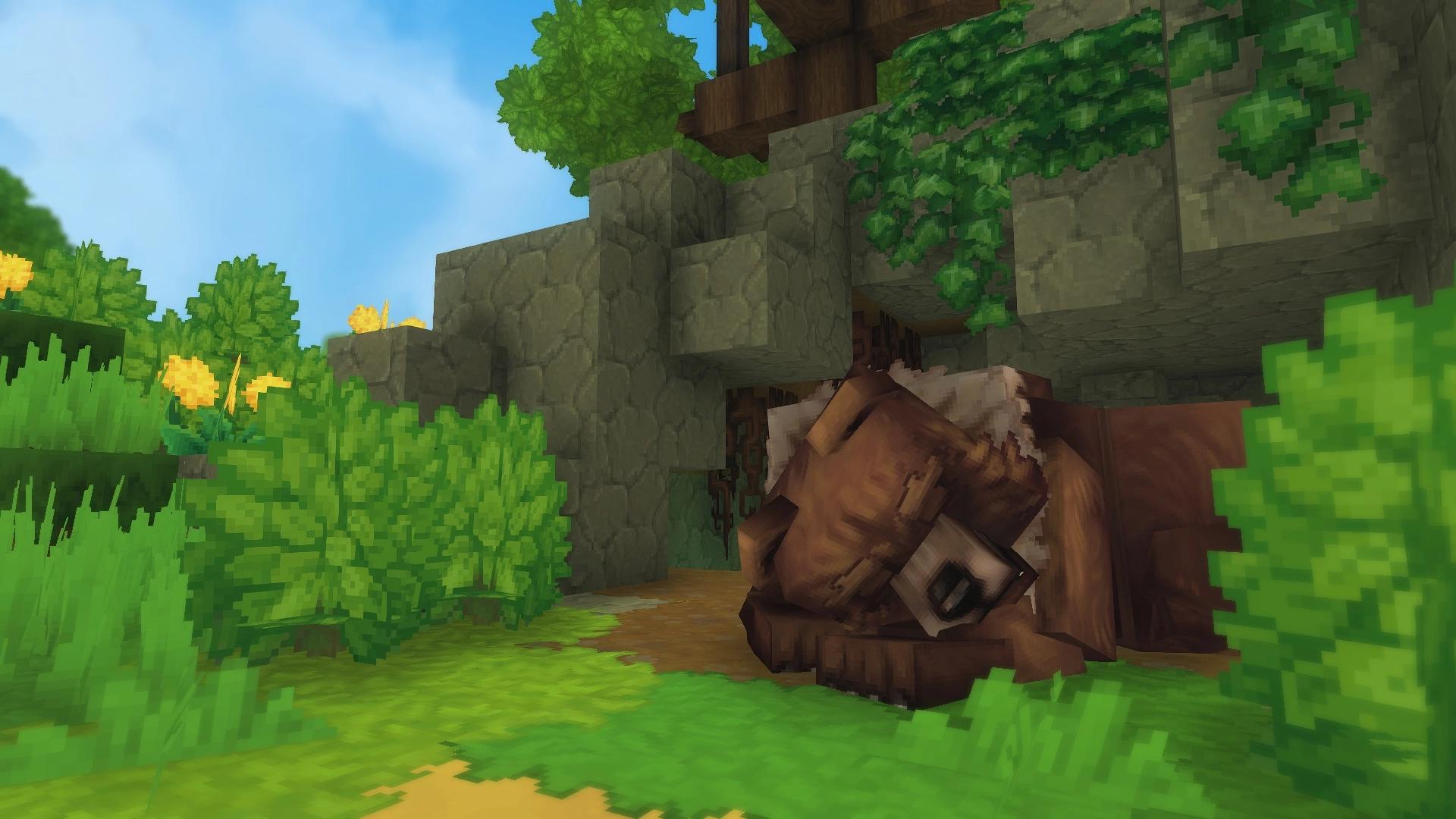 Un grizzli en train de dormir, le tête contre ses deux pattes, protégé par une petite falaise de roche.