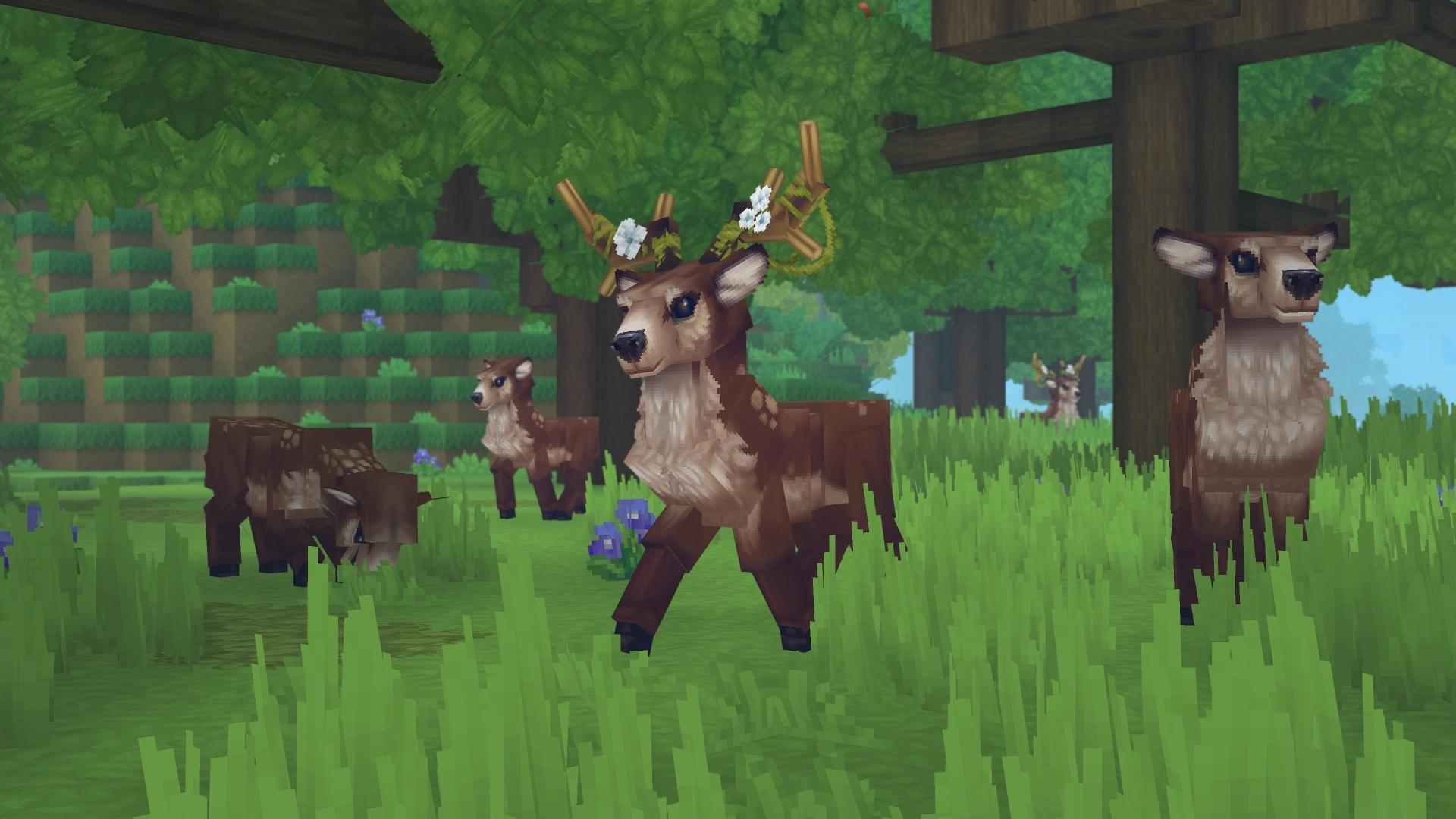 Des cerfs et biches en famille au milieu de la verdoyante forêt.