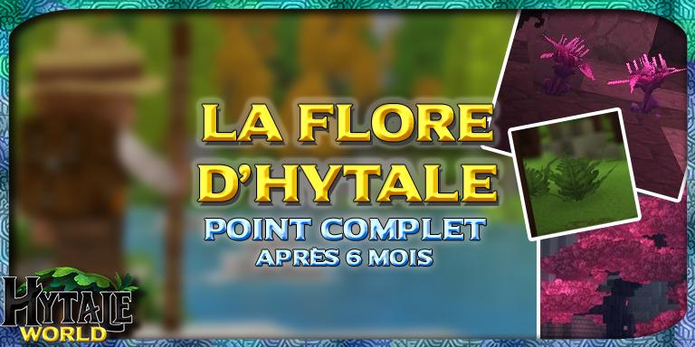 Flore d'Hytale : un point après 6 mois